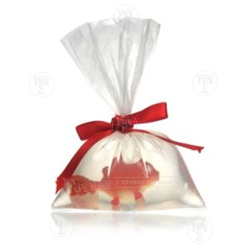 Goldfish in a Soap in a Bag