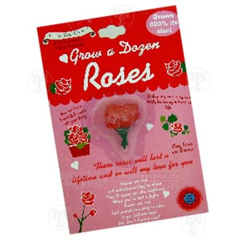 Grow a dozen roses