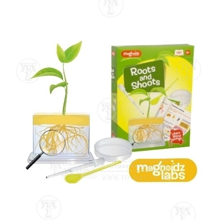Roots and Shoots Science Kit