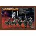Warhammer Dark Elf Cold One Knights