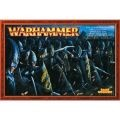 Warhammer Dark Elf Warriors Regiment