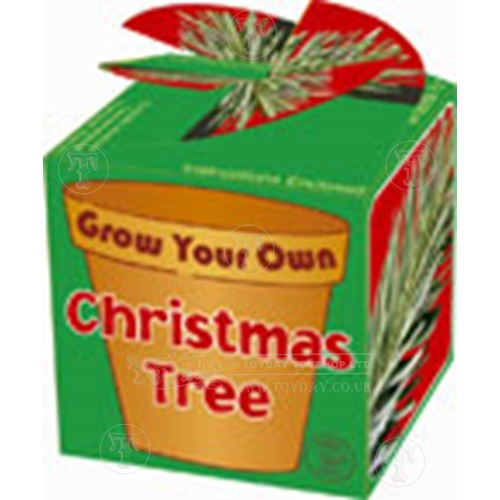 Grow Your Own Xmas Tree